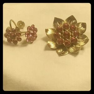 Retro Pink and Gold Earrings and Brooche